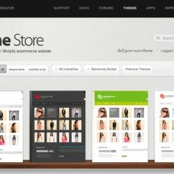 How to Choose a Shopify Theme
